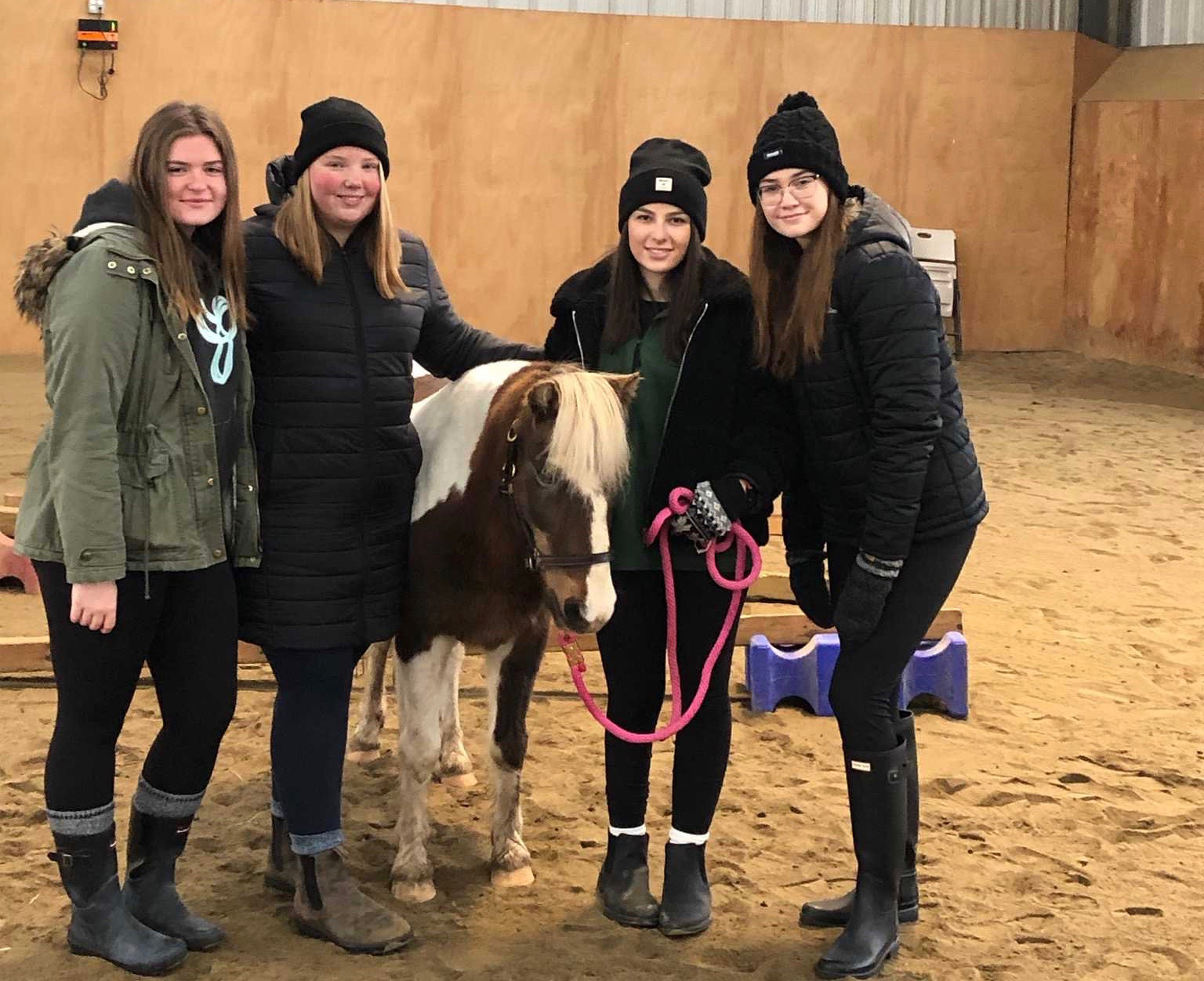Equine Assisted Learning day for students at St. Charles College